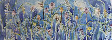 Hebridean Flowers