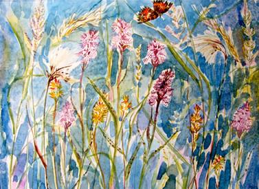 Harris Flowers