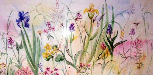Wild Flowers, Quidinish