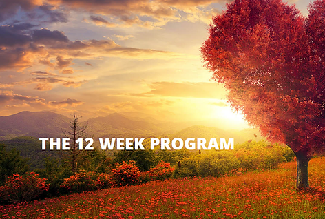 12 week program pic.png
