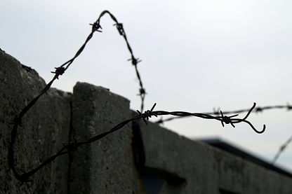 barbed wire fence_2.jpg