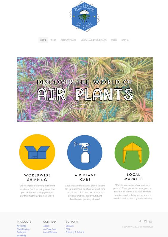 beach_paradise_air_plants.png