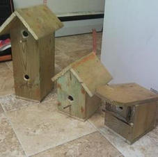 Built-to-Order Birdhouses made by Last Neanderthal.
