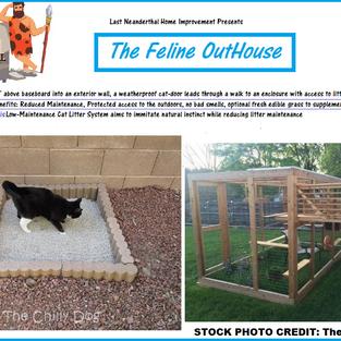 The Feline Playpen