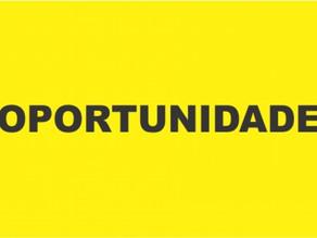 Prefeitura de Triunfo abre seleção para área da educação