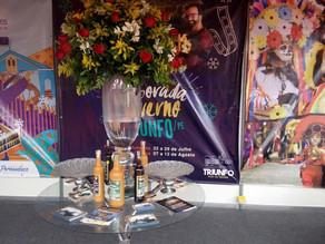 ExpoSerra e Fenearte marcaram fim de semana com exposições de Triunfo