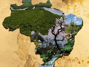 Biomas brasileiros e Defesa da Vida são tema da Campanha da Fraternidade 2017