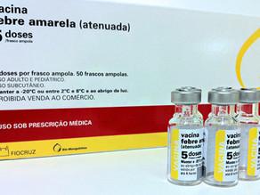 Casos notificados de febre amarela no Brasil já ultrapassam a marca de mil, diz ministério