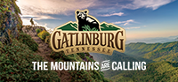 Gatlinburg_Reciprocal_logo_dfa3a789-f28b