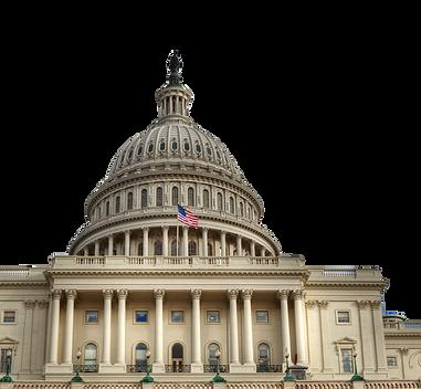 US Capitol Black.png