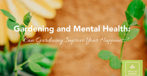 Gardening and Mental Health: Can Gardening Improve Your Happiness?