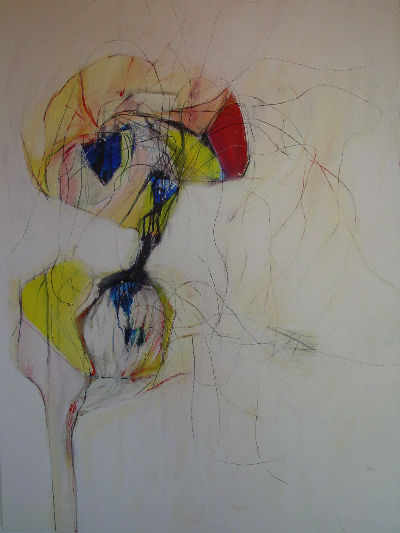 yellow spots (4)