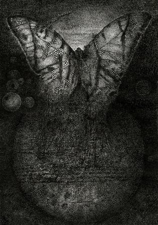 כנפיים