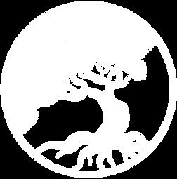 white-logo-no-text.png