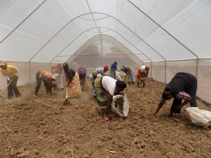 A success story: The Naro Moru Women's Group in Kenya