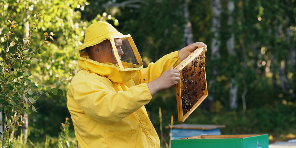 Introduction to Beekeeping - Part 1 of 4