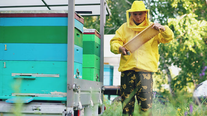 storyblocks-young-beekeeper-man-clean-wo