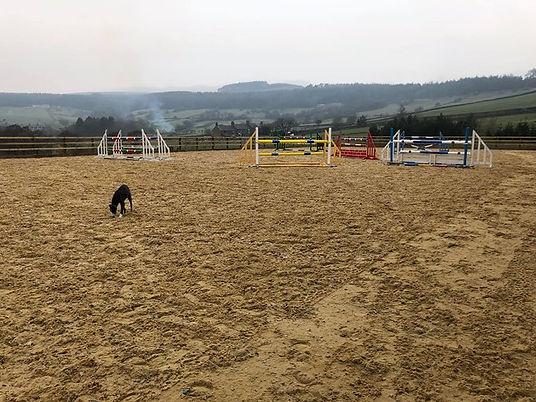 Arena available to hire 😊🐴👍🏻 course