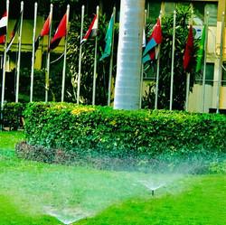 UN FAO Headquarter Egypt 01