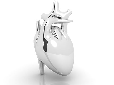 silver coloured  human heart  isolated o