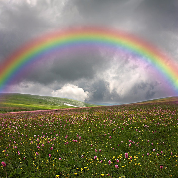 Rainbow Bridge, Meadow