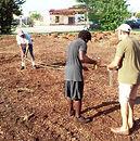 Bring in lots of mulch & start garden design.