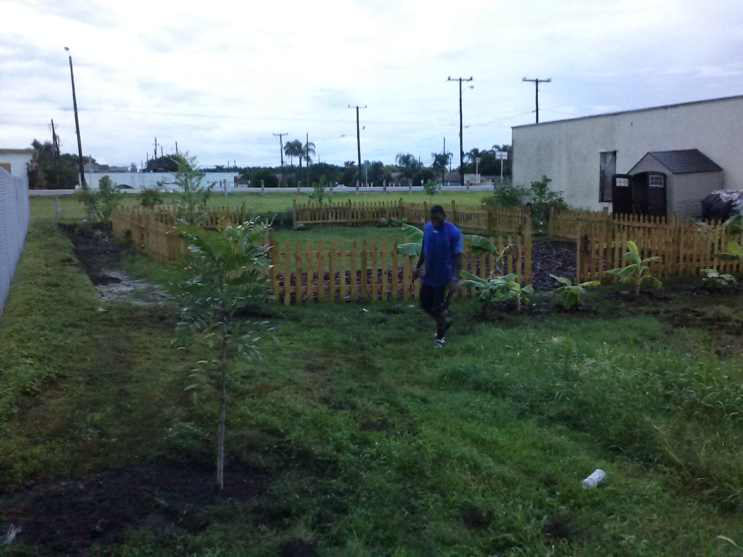 Hope4Pahokee_garden (10)