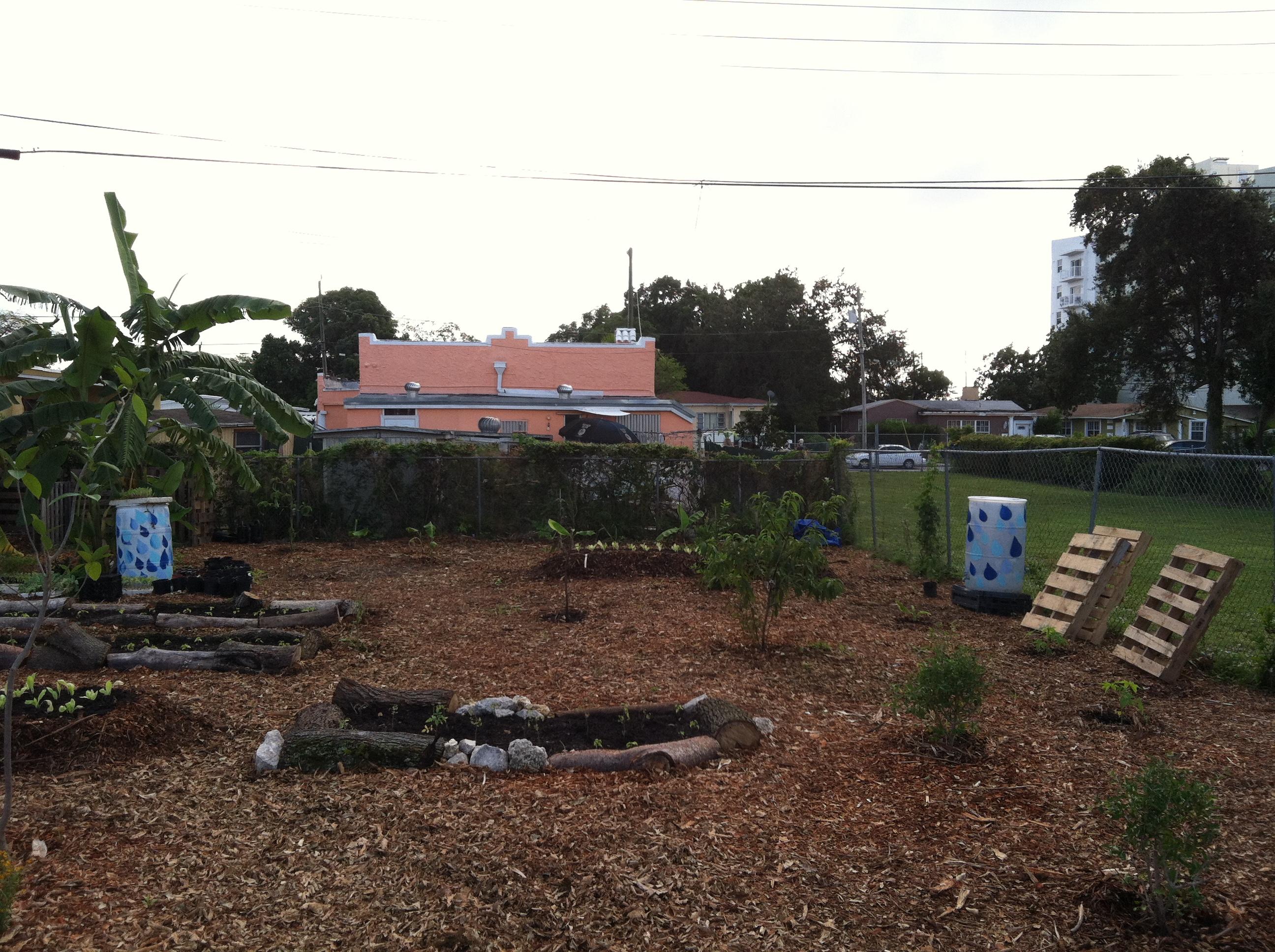 Urban Farming (6)