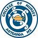 College of Nurses Aotearoa Logo RGB.jpg
