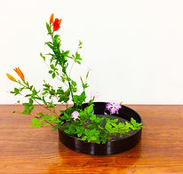 Shakei Moribana, Yoshiki Hon-i (Landscape Moribana, Traditional Method)
