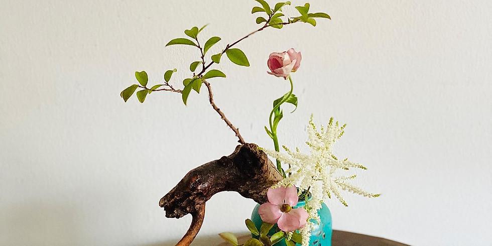 4/17 Above Assist Teacher's 2nd: Tall Vase Kasui Kei ( The Cascading Style )