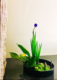 Japanese Floral arrangement Ne York Ikeana HANADOJO