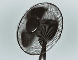 fan-wind