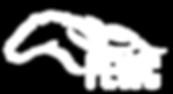 pewc logo.PNG