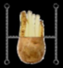 Potato fry split.png
