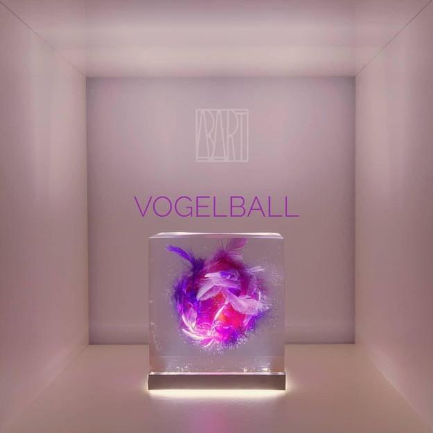 Kopie von VOGELBALL