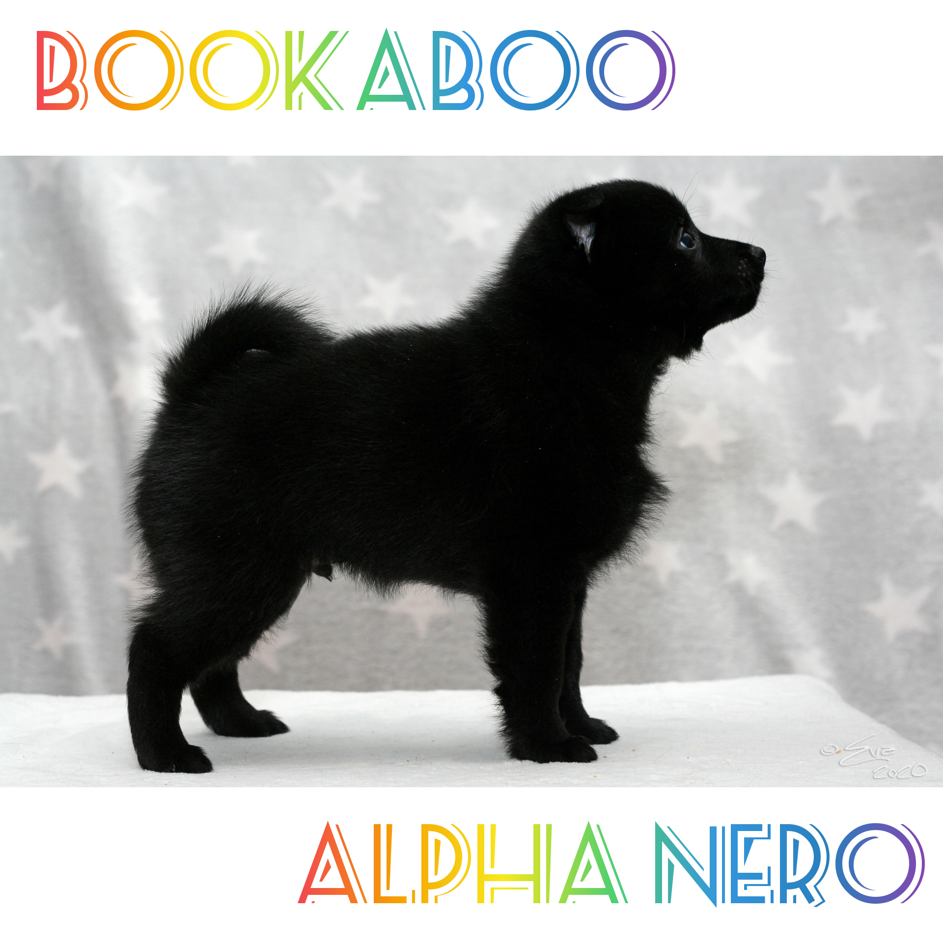 Bookaboo Alpha Nero