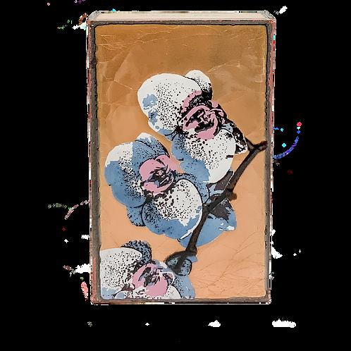 Bloom #260
