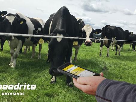 Datamars Livestock launches 'smart' 46 Joule energizer
