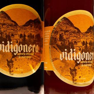 Vidigonera4-web.jpg