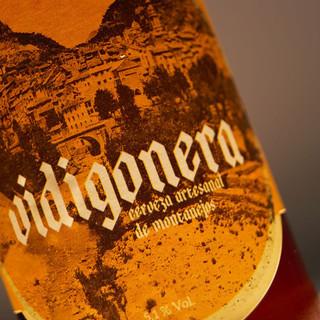 Vidigonera3-web.jpg