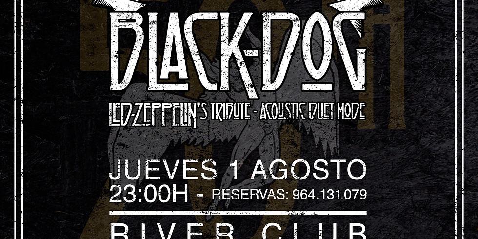 Black Dog - Tributo Acustico Led Zepelin