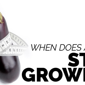 When Does A Penis Stop Growing?