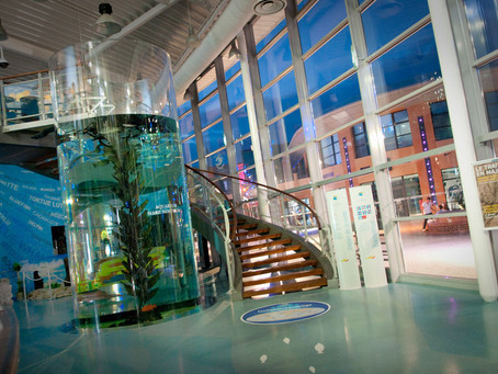 Séminaire à l'Aquarium Mare Nostrum Montpellier