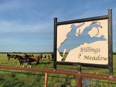 Entry sign billings meadow - Rafter G Ro