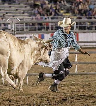 bullfight graphic.jpg