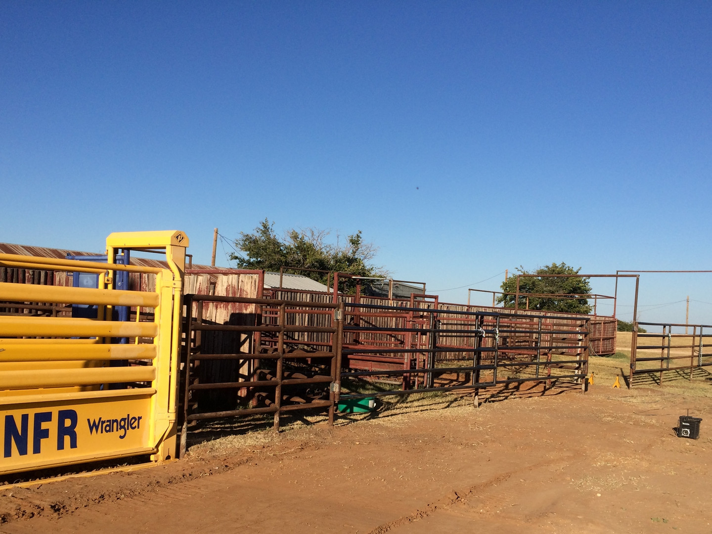 Metal Panels and Fences For Livestock Alleys
