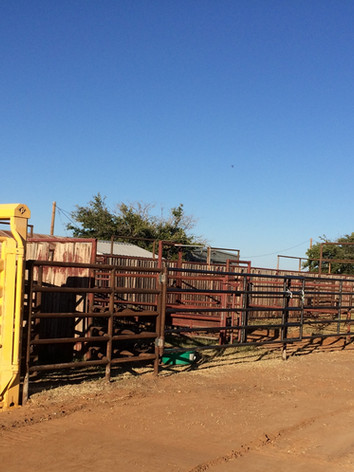 Welding metal fence panels at a ranch
