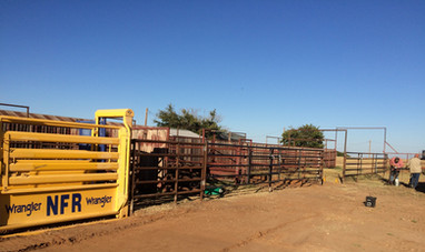 Farm & Ranch Metal Gates & Fence Panels