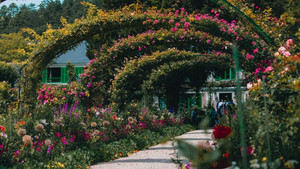 the changing seasons at monet's garden